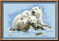 1033 Белые медведи