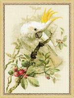 1362 Белый какаду