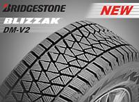 Новая зимняя шина от Bridgestone BLIZZAK DM-V2
