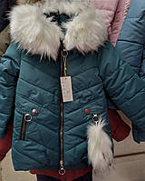 Курточка для девочек оптом, 92-104 рр. Артикул: 05000