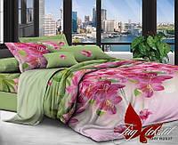 ✅ Двуспальный Евро комплект постельного белья (Поликоттон) TAG XHY2537