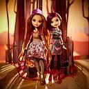 Набор кукол Холли и Поппи (Holly and Poppy O'Hair) Эвер Афтер Хай, фото 8