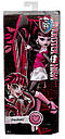 Кукла Monster High Дракулаура (Draculaura) базовая без питомца Монстр Хай, фото 5