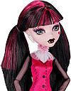 Кукла Monster High Дракулаура (Draculaura) базовая без питомца Монстер Хай Школа Монстров, фото 4