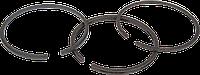 Поршневые кольца (Низк.давл) Fiac AB300/800