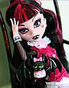 Кукла Monster High Дракулаура (Draculaura) с летучей мышью базовая Монстр Хай, фото 4