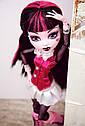 Кукла Monster High Дракулаура (Draculaura) с летучей мышью базовая Монстр Хай, фото 6