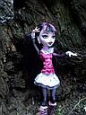 Кукла Monster High Дракулаура (Draculaura) с летучей мышью базовая Монстр Хай, фото 8