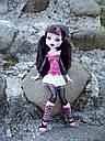Кукла Monster High Дракулаура (Draculaura) с летучей мышью базовая Монстр Хай, фото 9