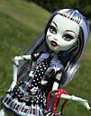 Кукла Monster High Фрэнки Штейн (Frankie Stein) с питомцем щенком базовая Монстр Хай, фото 3