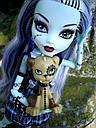 Кукла Monster High Фрэнки Штейн (Frankie Stein) с питомцем щенком базовая Монстр Хай, фото 6