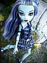 Кукла Monster High Фрэнки Штейн (Frankie Stein) с питомцем щенком базовая Монстр Хай, фото 8