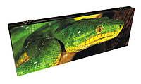 Нарды Зеленая Змея оригинальный эксклюзивный подарок
