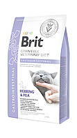 Brit Veterinary Diet Cat Grain free Gastrointestinal 2 кг - беззерновая диета при гастроэнтерите