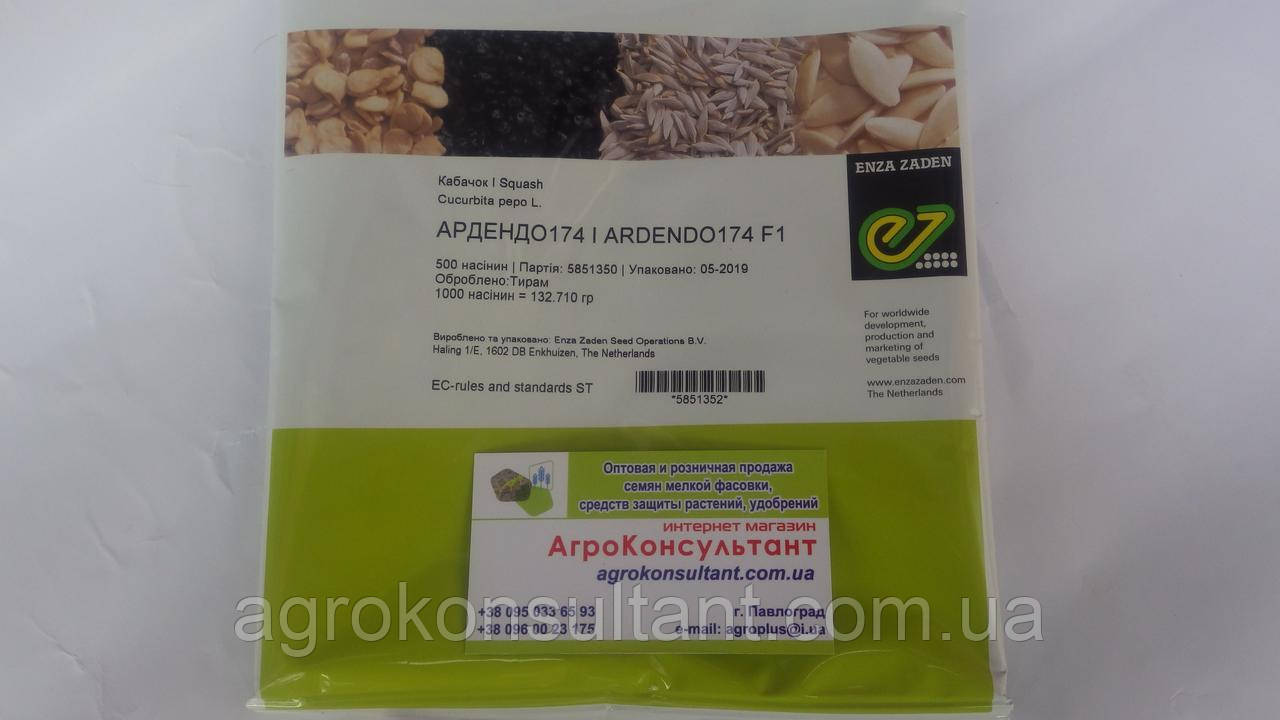 Насіння кабачка Ардендо F1 (Enza Zaden) 500 насіння - ранній гібрид (40-45 днів), світлий