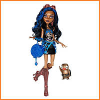 Кукла Monster High Робекка Стим (Robecca Steam) с пингвином базовая Монстр Хай