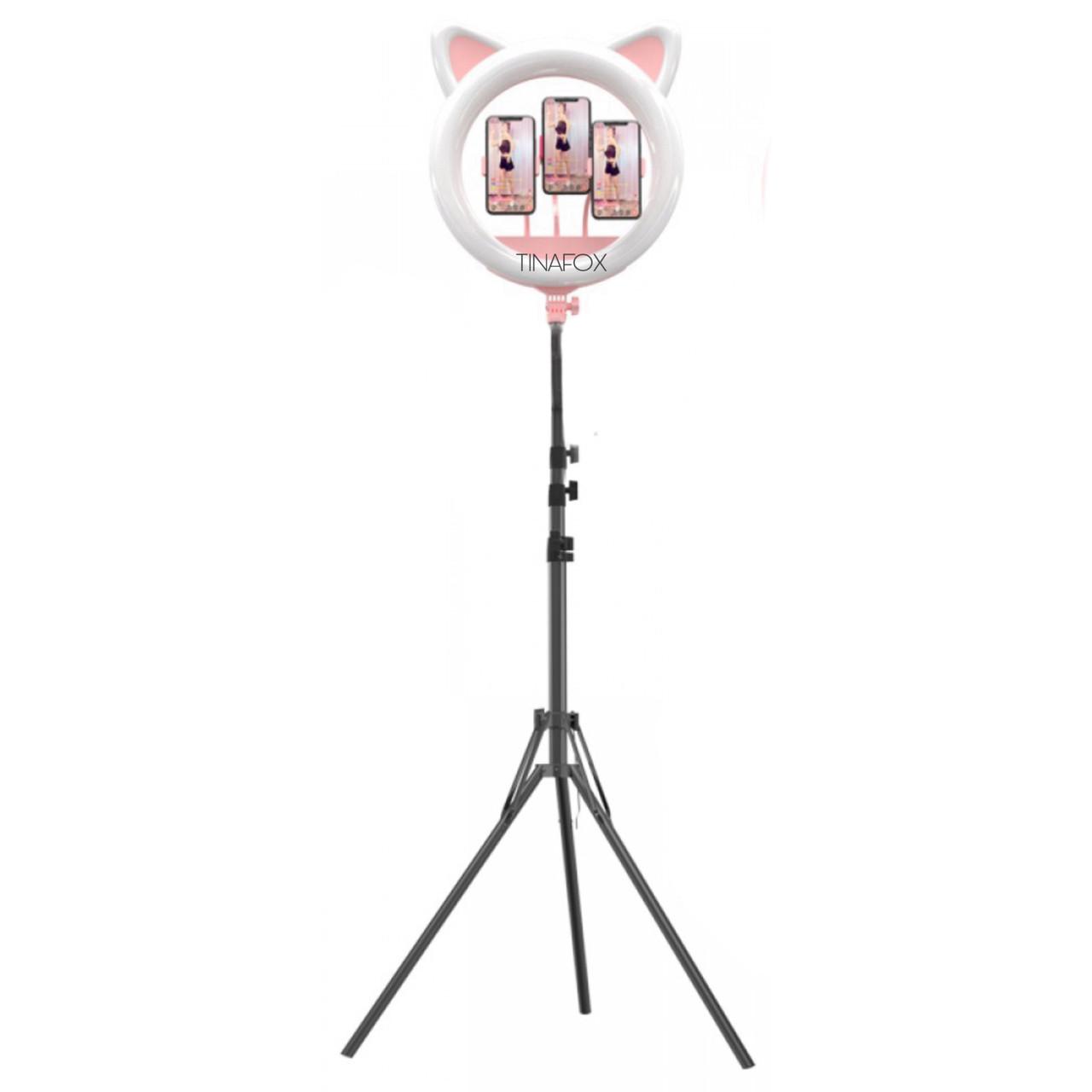 Лампа кольцевая напольная для съемки с штатив-треногой  RK-45