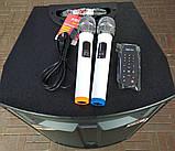 Потужна акумуляторна колонка HAMERSH (Temeisheng) 1521 з мікрофонами 500W (USB/Bluetooth/Пульт ДУ), фото 4