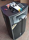 Потужна акумуляторна колонка HAMERSH (Temeisheng) 1521 з мікрофонами 500W (USB/Bluetooth/Пульт ДУ), фото 5