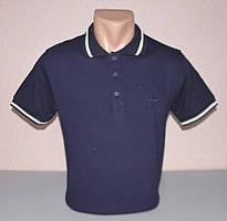 Чоловіча футболка полло hector L раз (15550)