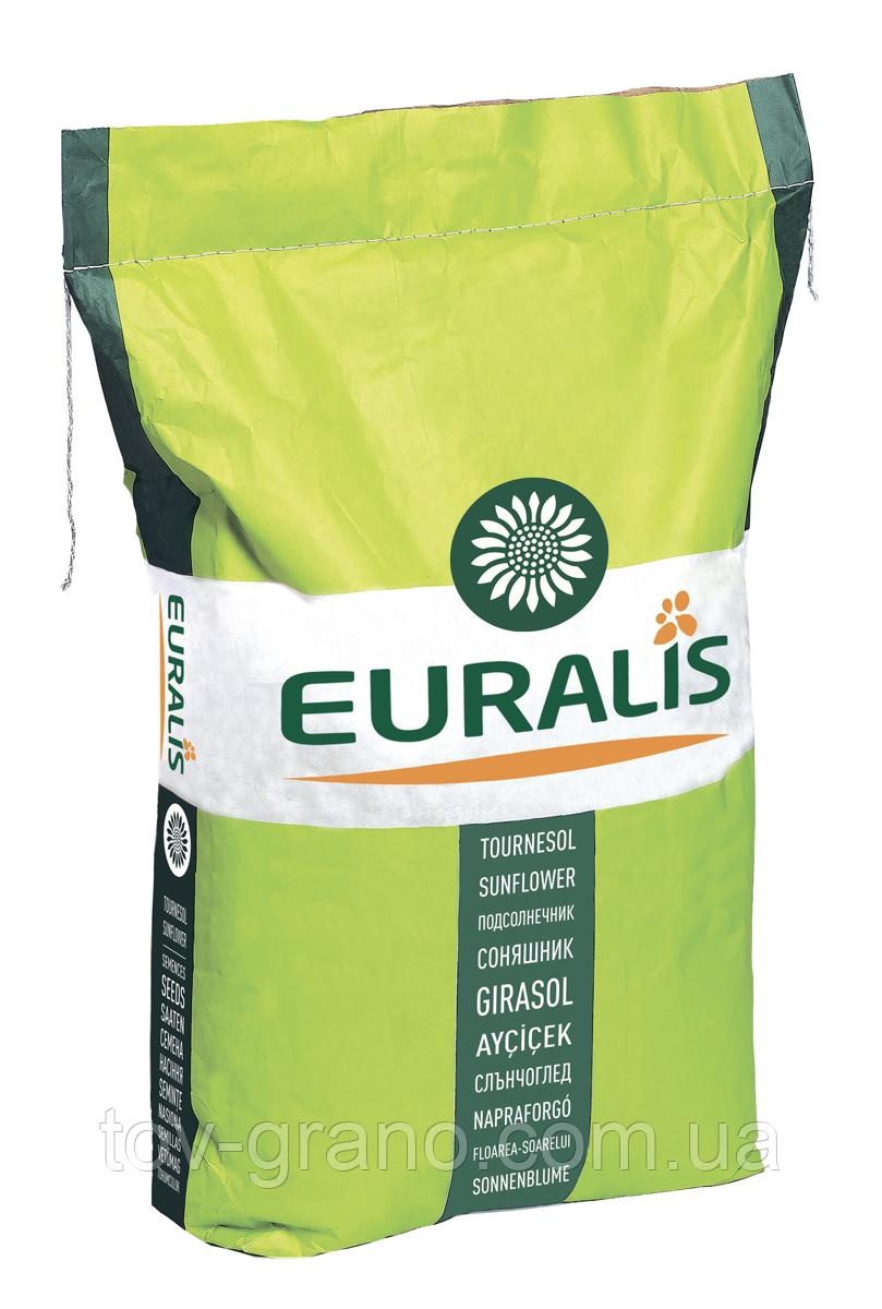 Семена подсолнечника Euralis ЕС Ниагара