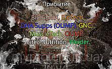 Поступление: BIOGENIX, BioTech, DNA Supps (OLIMP), GNC, MuscleTech, OLIMP, Scitec Nutrition, Weider.