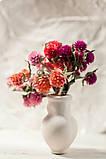 Сухоцветы для эпоксидной смолы, Гомфрена, 4 цвета, фото 4