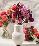 Сухоцветы для эпоксидной смолы, Гомфрена, 4 цвета, фото 6