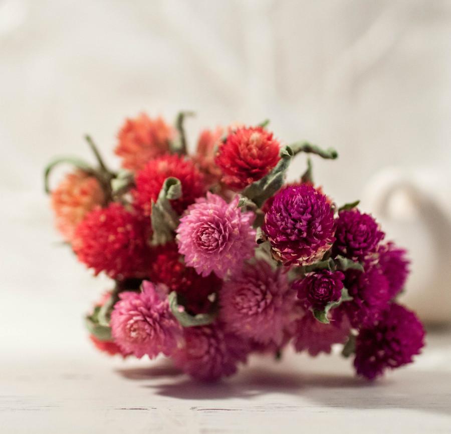 Сухоцветы для эпоксидной смолы, Гомфрена, 4 цвета