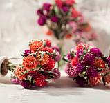 Сухоцветы для эпоксидной смолы, Гомфрена, 4 цвета, фото 3