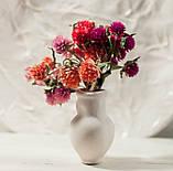 Сухоцветы для эпоксидной смолы, Гомфрена, 4 цвета, фото 8