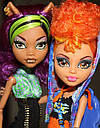 Набор кукол Monster High Клодин и Хоулин Вульф Clawdeen Howleen Монстер Хай Школа монстров, фото 2