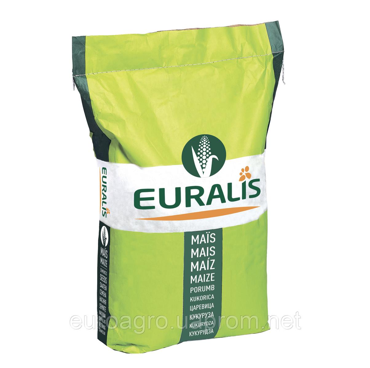 Насіння кукурудзи - ЕС МІЛОРД (2019 р)