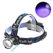 Ультрафиолетовый фонарь на лоб XQ-24-UV365 nm, ЗУ 220V/12V, ultra strong, 2x18650