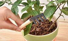 Набор для ухода за комнатными растениями и россадой, фото 2