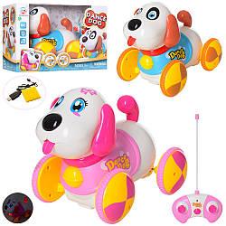 Собака 600B р/у, аккум, 24см, муз, свет, ездит, USBзарядное, 2цвета, в кор-ке, 29-20-15см
