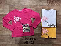 Реглан для девочек оптом, Glo-story, 98-128 см,  № GCX-9366, фото 1