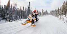 Снігоходи