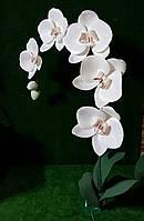 """Торшер """"Орхидея """" Ростовые цветы"""
