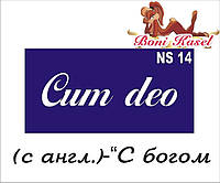 """""""С богом"""" трафаретная надпись  №-NS14"""