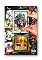 Раскраска по номерам карандашами DankoToys PBN-01-02 5 рисунков + 12 карандашей
