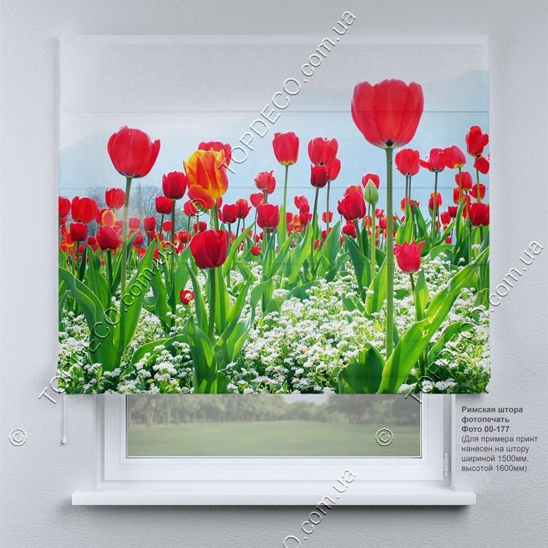 Римская штора Тюльпаны. Бесплатная доставка. Инд.размер. Гарантия. Арт. 00-177