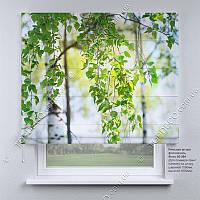 Римская штора Природа. Бесплатная доставка. Инд.размер. Гарантия. Арт. 05-094