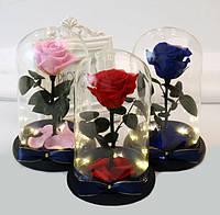 Роза в колбе с LED  подсветкой МАЛЕНЬКАЯ КРАСНАЯ