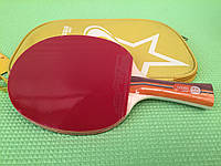 Ракетка для настольного тенниса DHS 2 Star