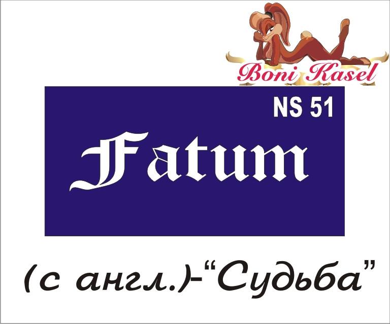 """трафарет надпись для биотату """"Судьба""""  №-NS5"""