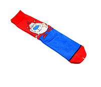 Мультяшные высокие мужские носки Новая жизнь Рокко, фото 3