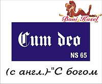 """""""С богом"""" трафаретная надпись №-NS65"""