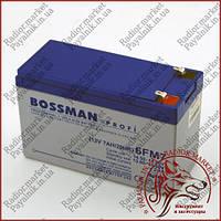 Акумулятор свинцево-кислотний Bossman Profi 12V 7AH 20HR (6FM7)