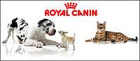 Royal Canin (Франция) корм для собак и щенков